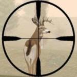 A Look Back at Deer Hunter (1997)
